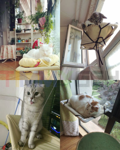 new cat window mounted sunshine pet wall bed hammock suction cups