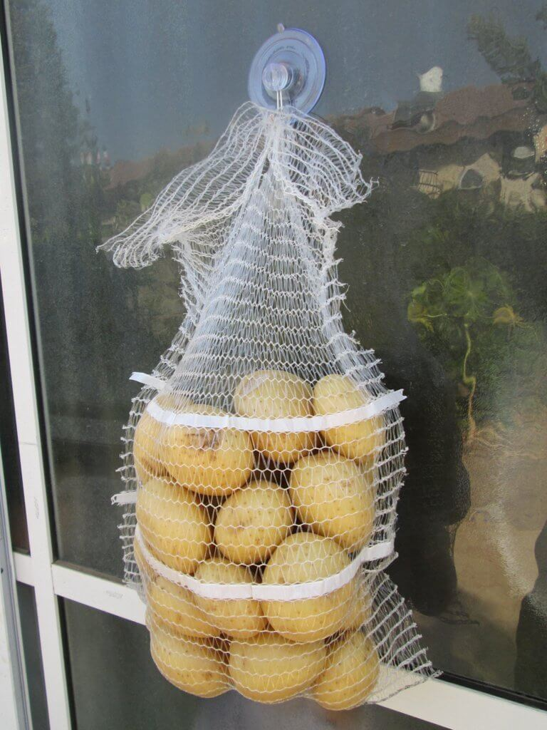 suction cups hook for hand fruit