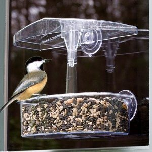 obsever window feeder with suction cups